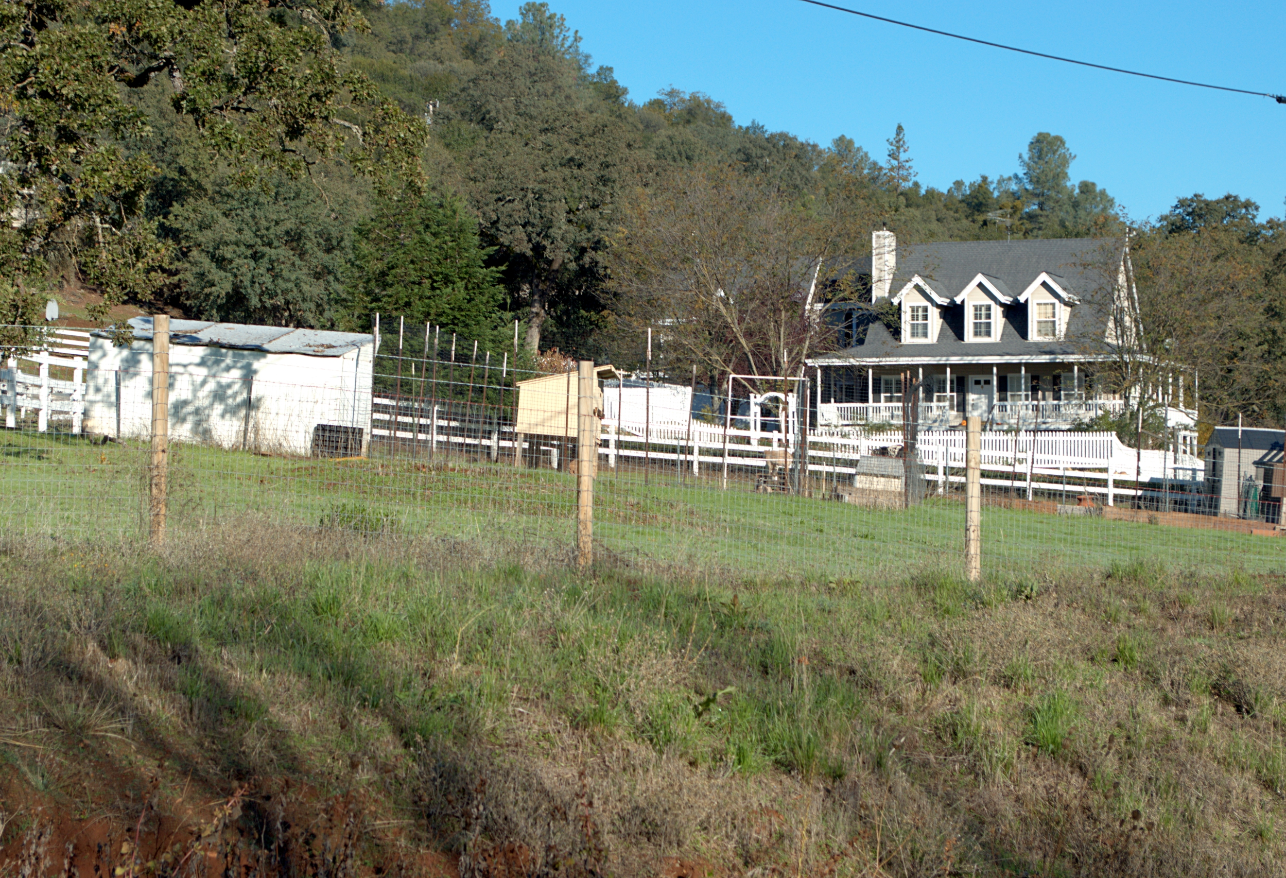 Shingle Springs 5 2500w.jpg