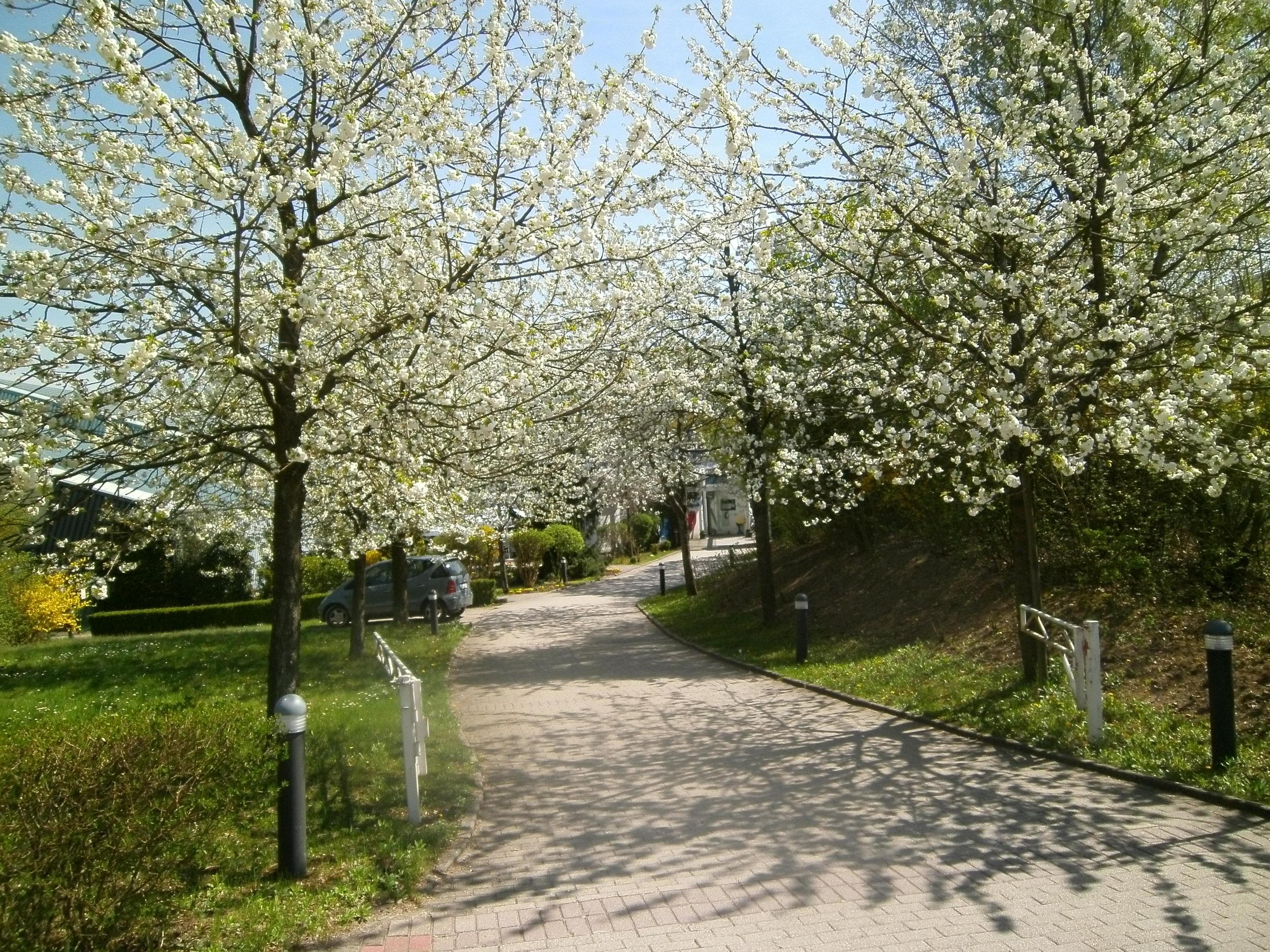 Sportpark-Fassbender-aussen02.jpg