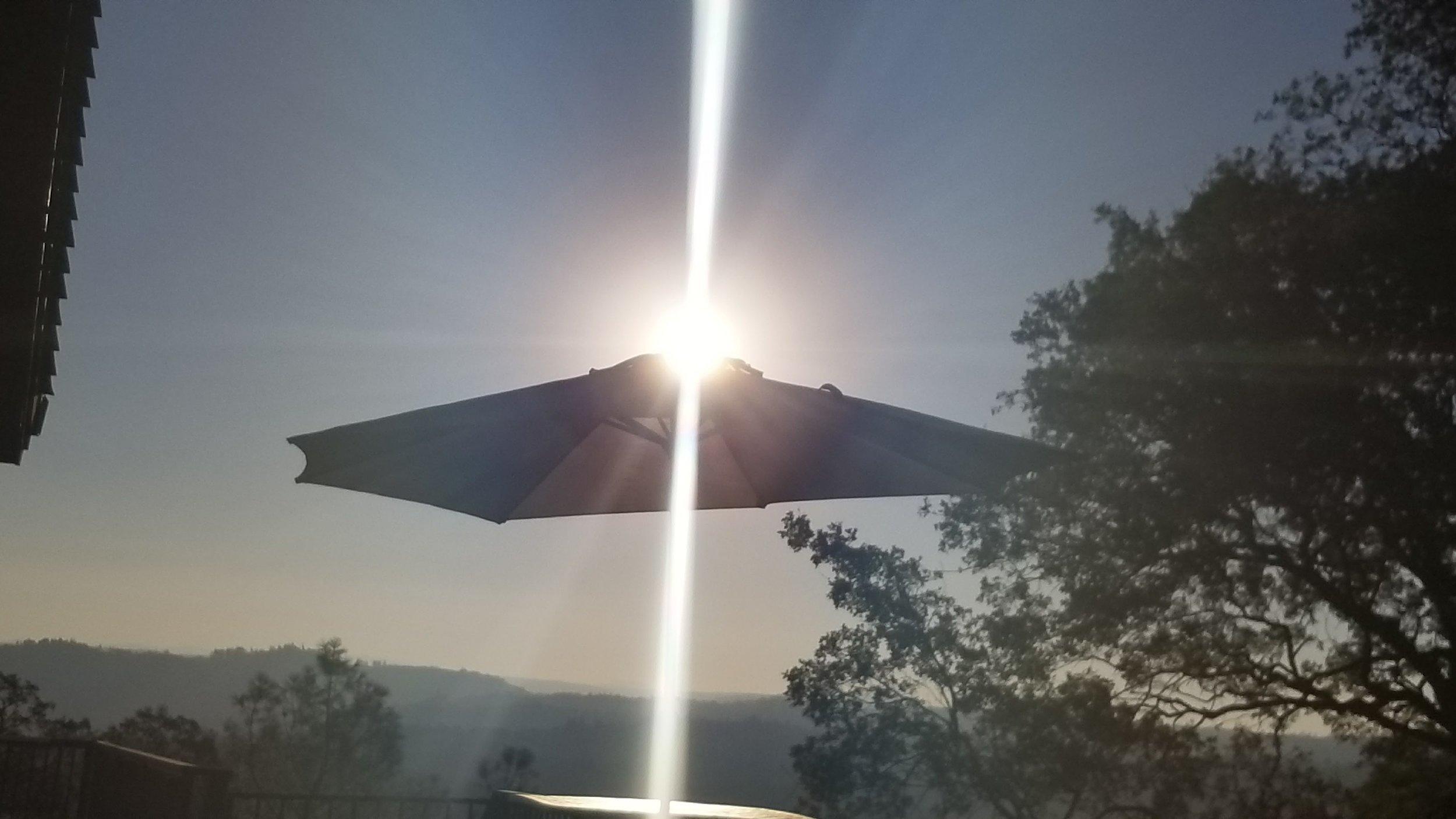 UFO Umbrella.jpg