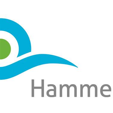 logo Hamme.jpeg