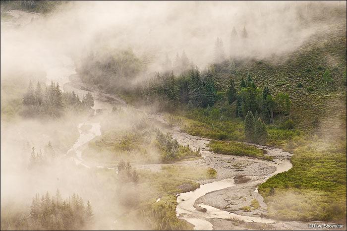 Crystal-River-fog-III -daveshowalter.jpg