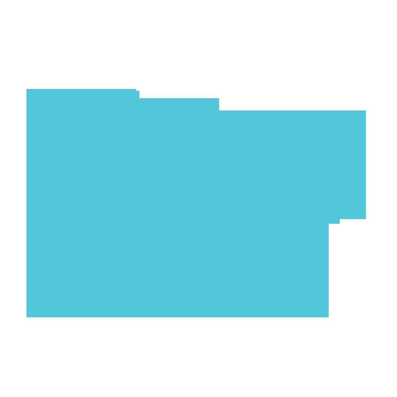 Jigsaw 2.png