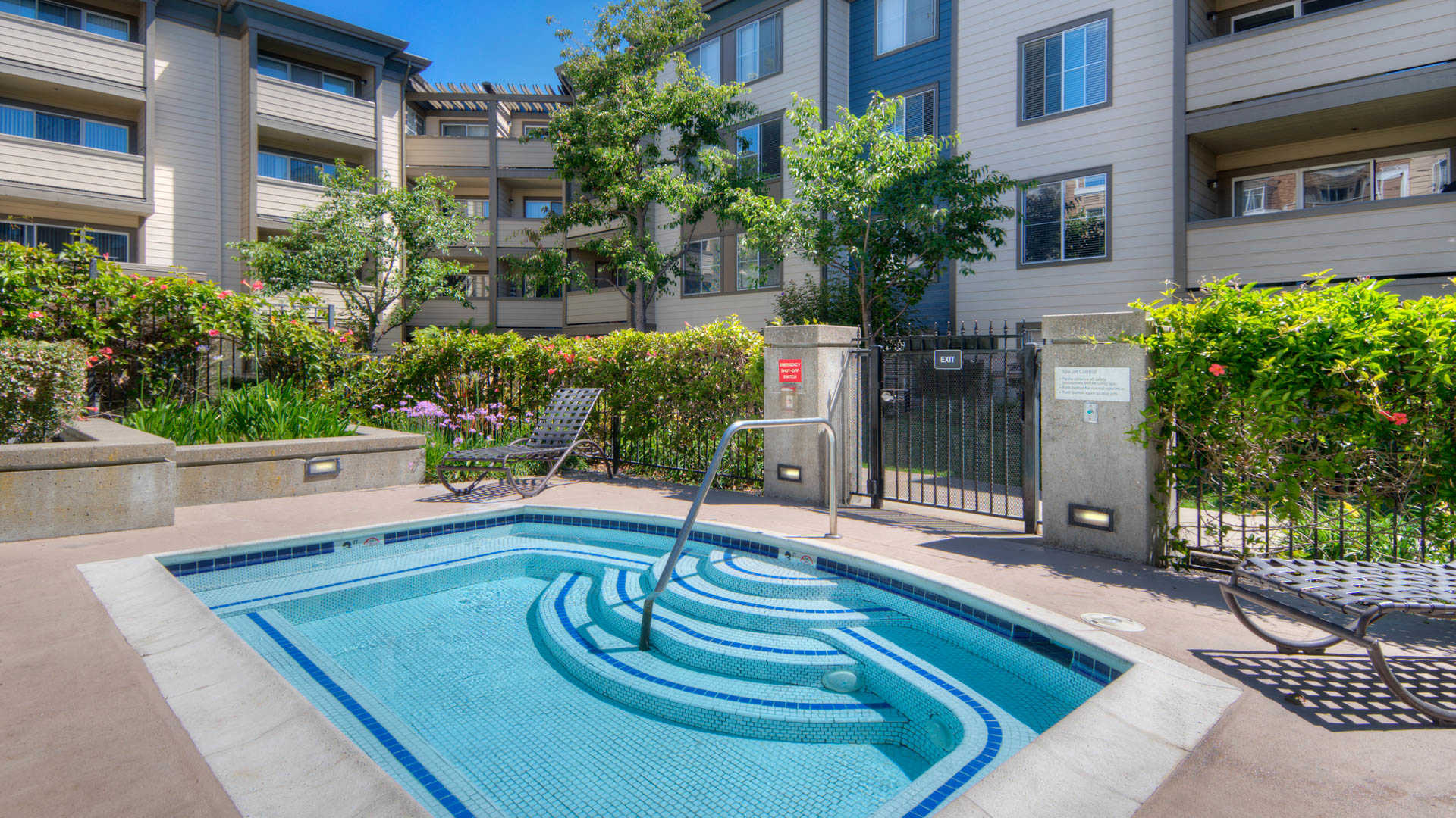 artistry-emeryville-apartments-swimming-pool.jpg
