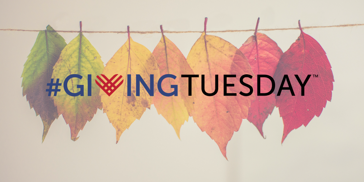 giving tuesday 2019 philanthropic events fundraising.png