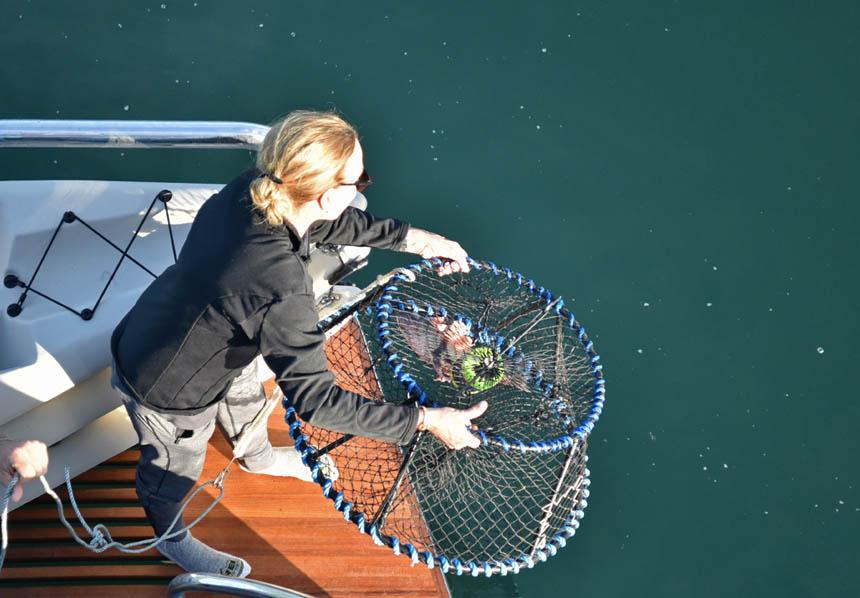 alaska_fishing.jpg