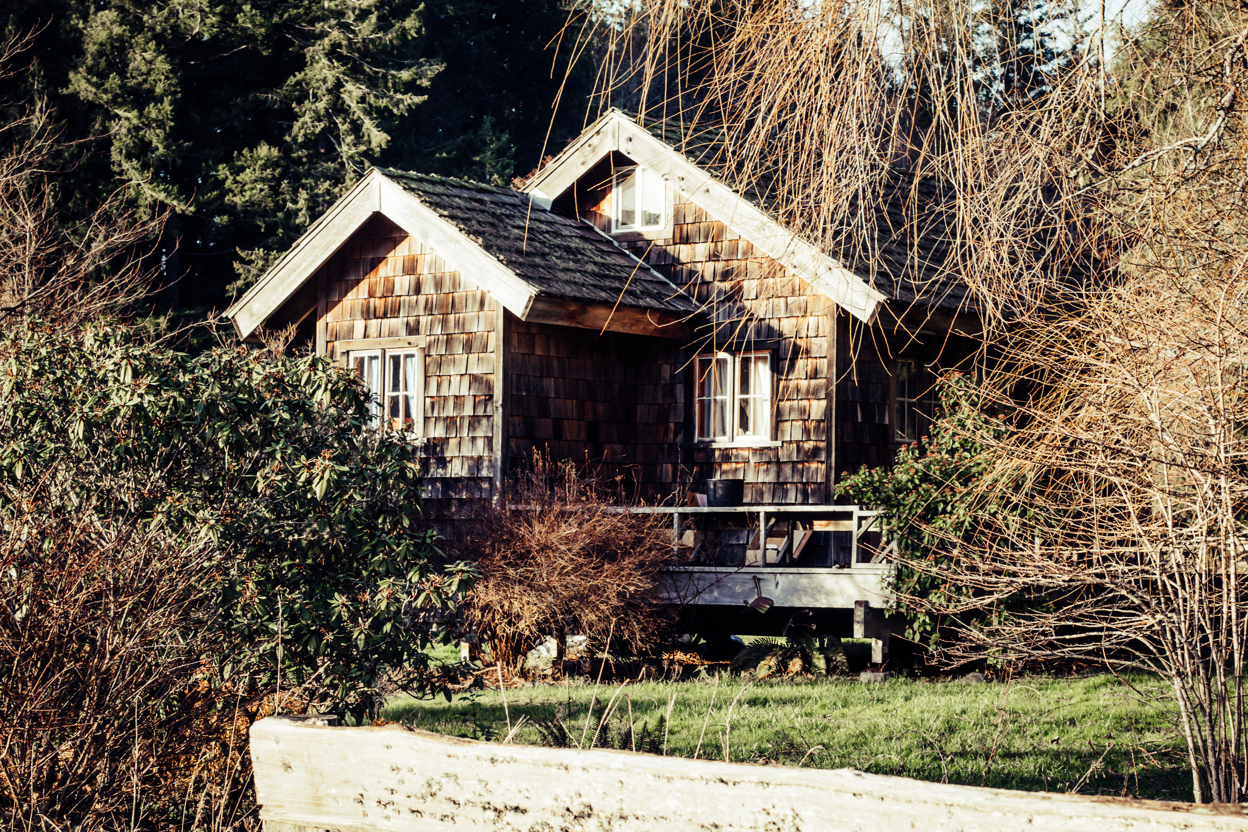 South Meadow Cabin