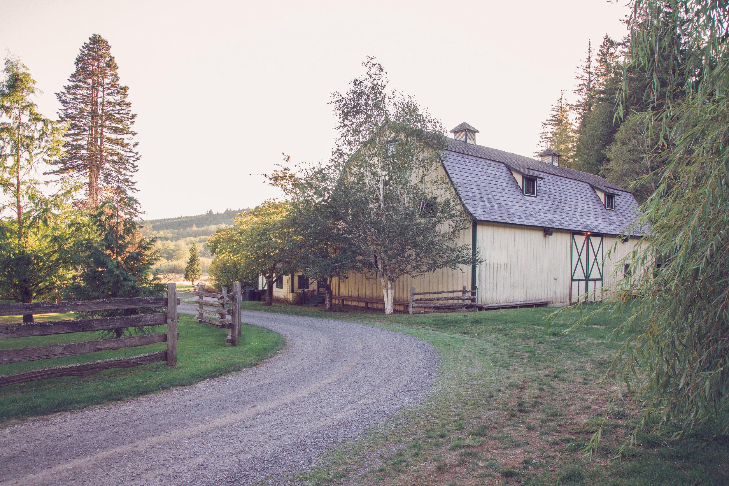 The Barn-0008.jpg