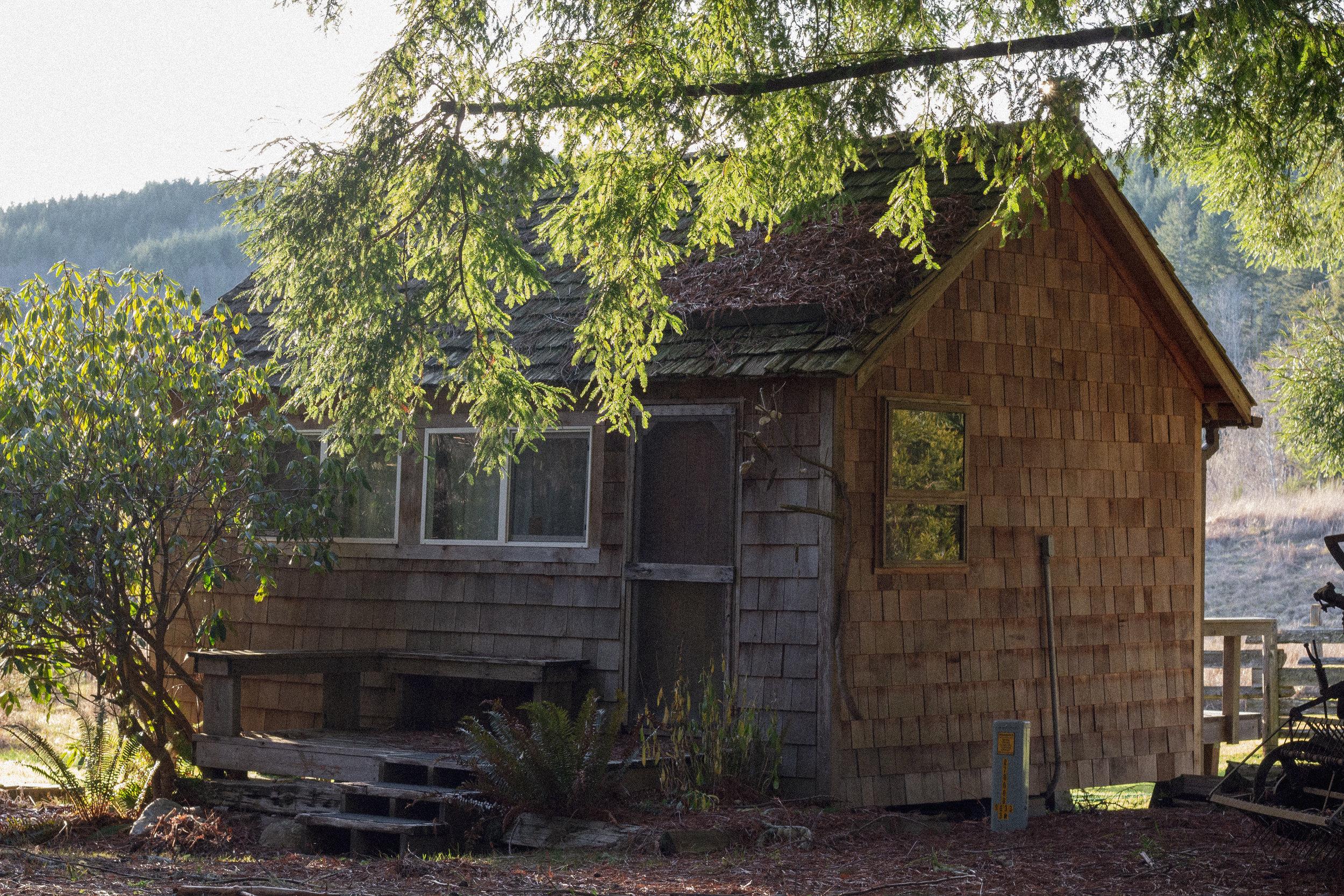 North Meadow Cabin