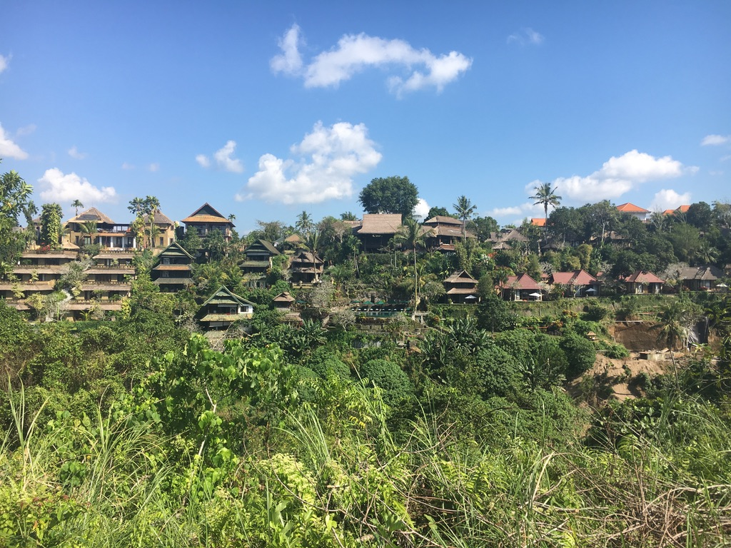 View from the Campuhan Ridge hike in Ubud
