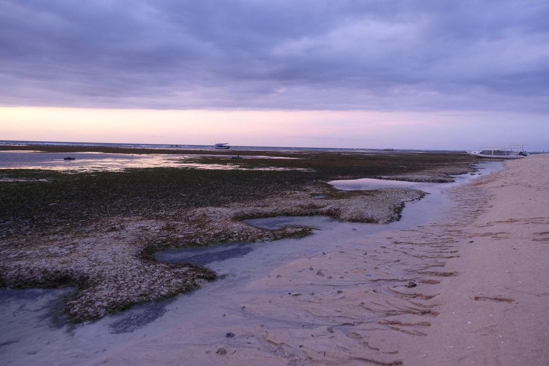Tide pooling at sunset