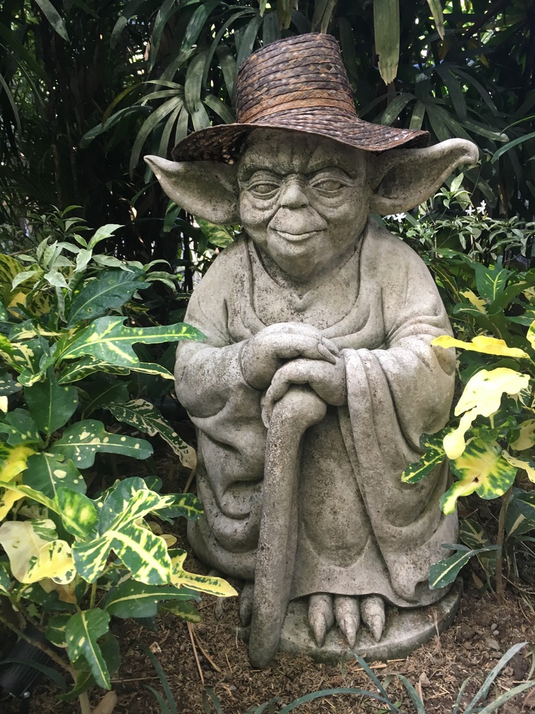 """""""Do or do not, there is no try"""" -Yoda"""