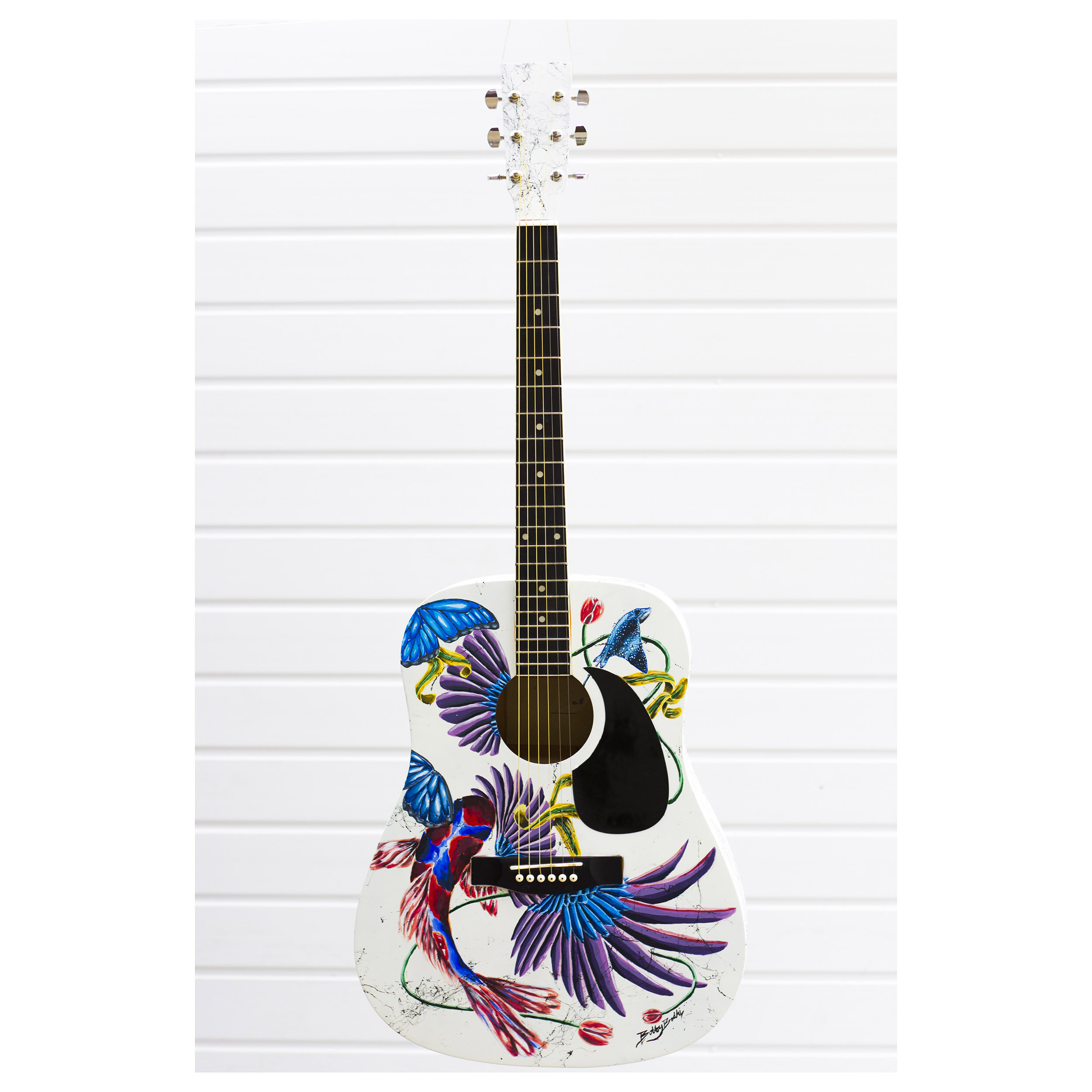 Custom Painted Acoustic Guitar