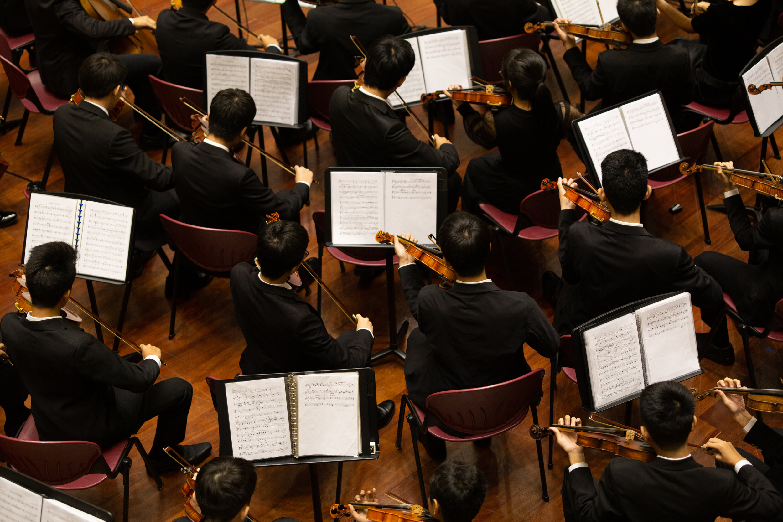Exaltation Orchestra - Interim Director - Mercer CrookAssistant Interim Director - Sarah Dunn