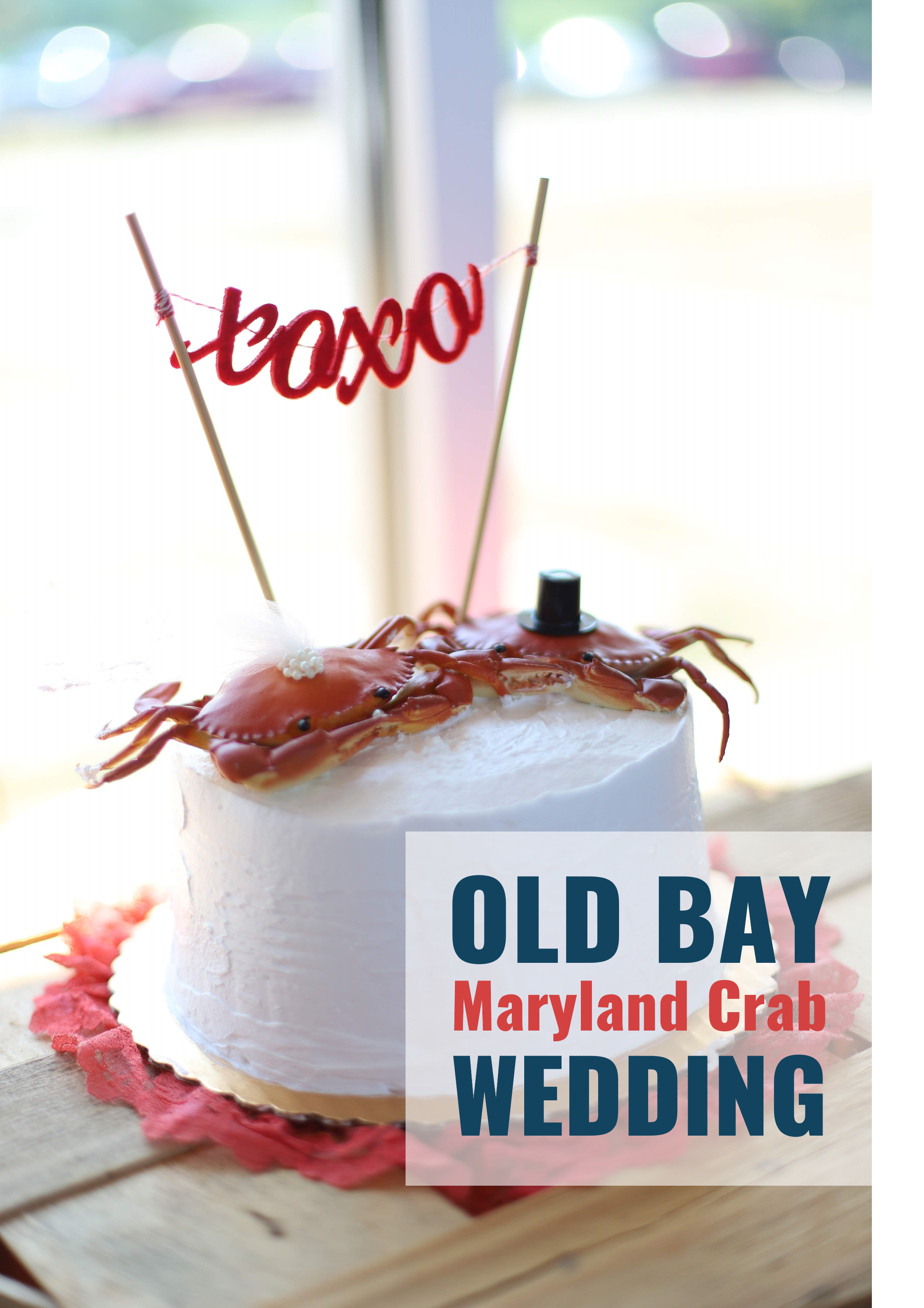 38_old_bay_wedding_tangled.png