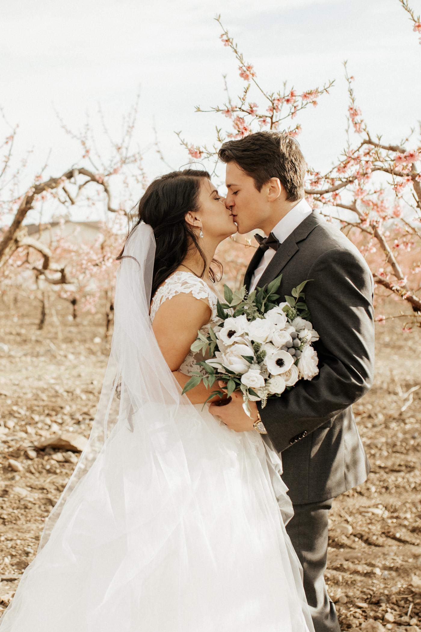 Spring blossomed wedding photos