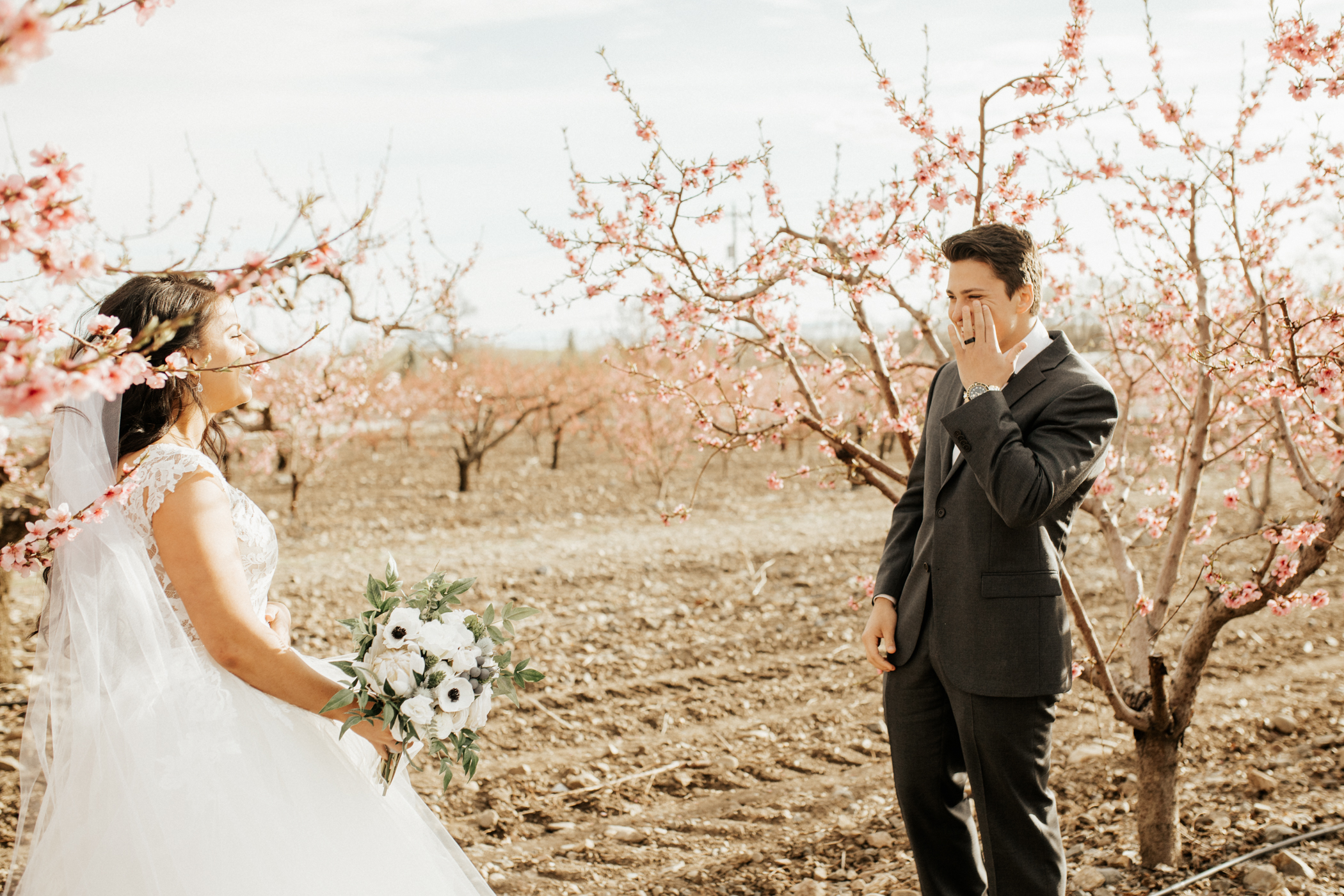 spring blossom orchard wedding photos