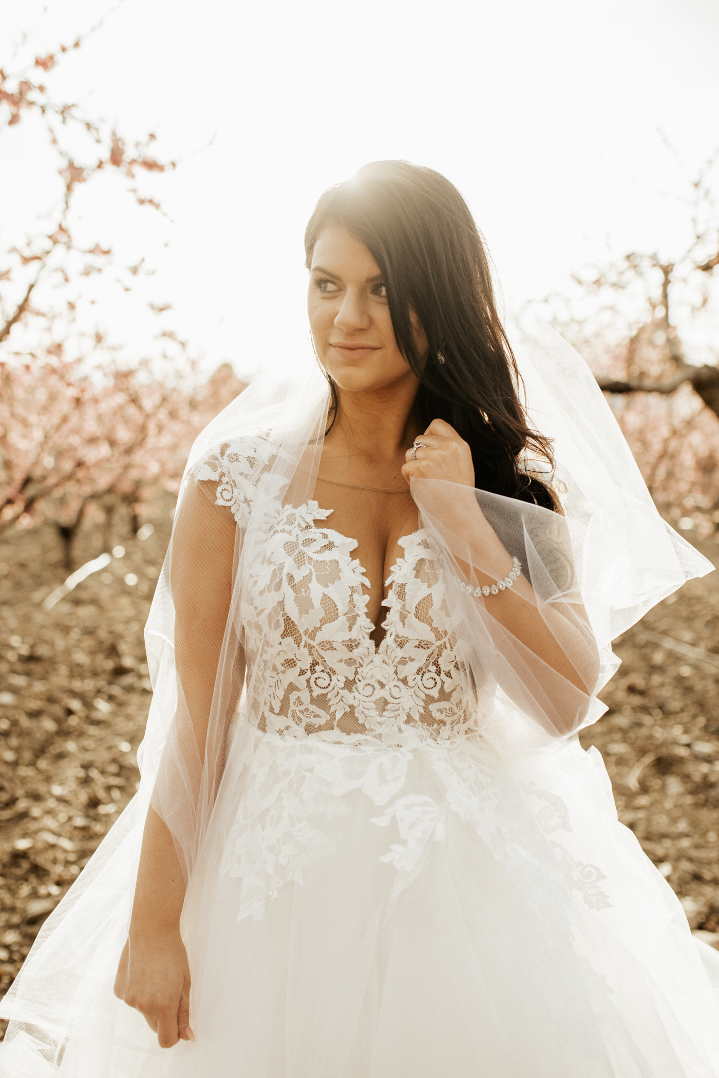 spring blossomed orchard wedding photos