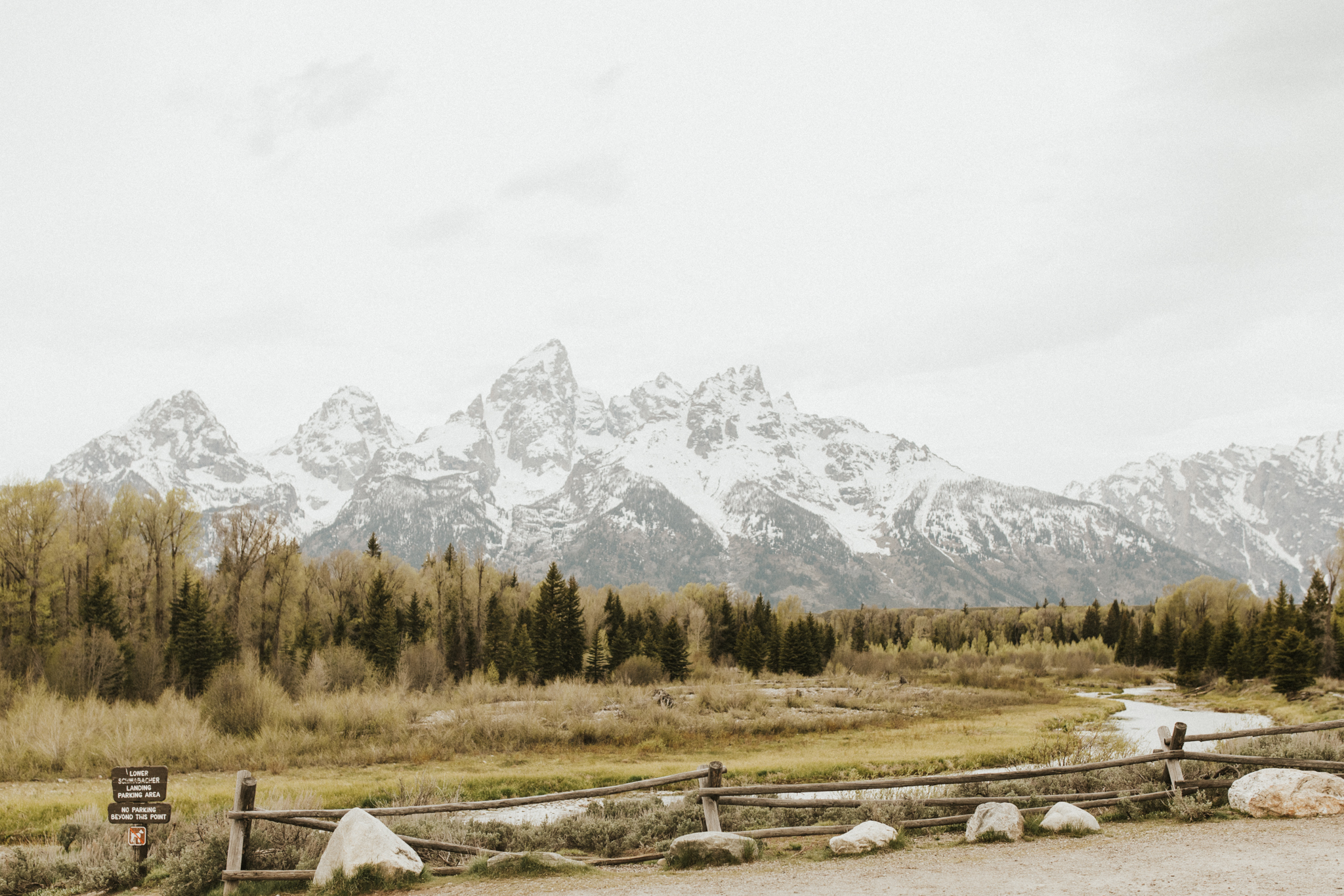 Jackson Wyoming Elopement at Schwabachers Landing