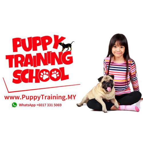 PuppyTraining.jpg