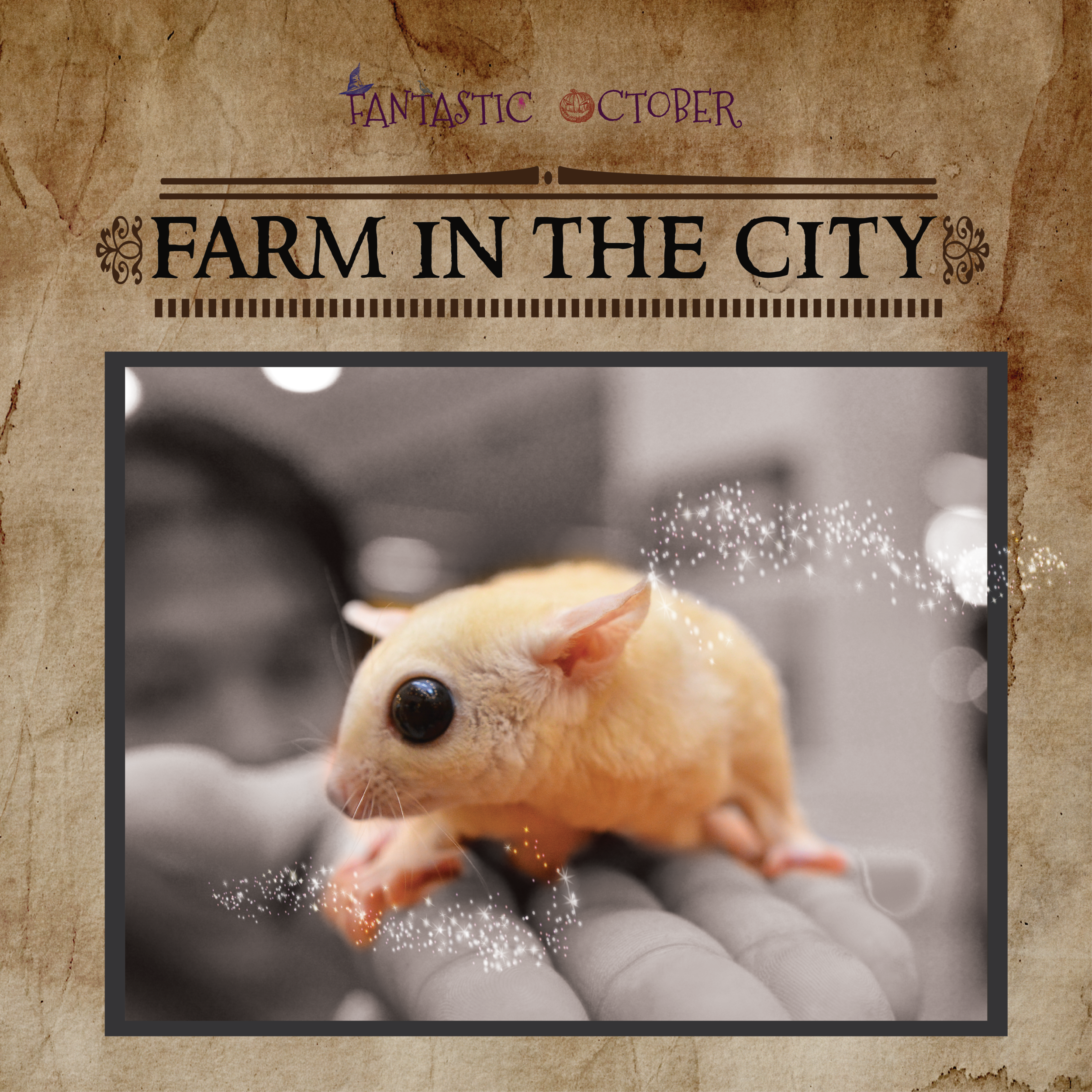 fb poster - farm in the city-01.png