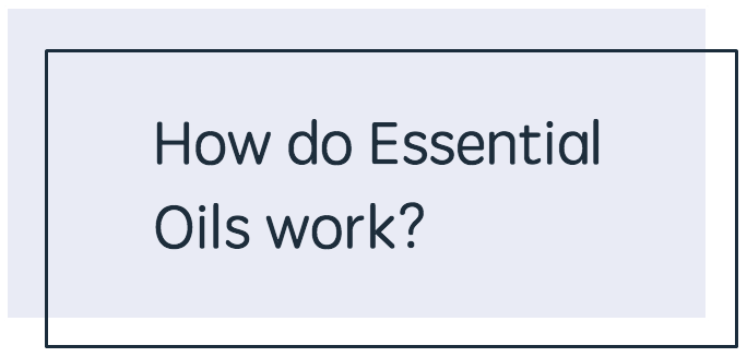 How Do Essential Oils Work - BLUE.png