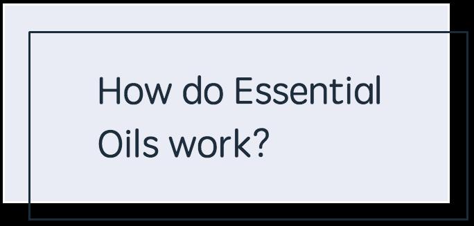 How Do Essential Oils Work - BLUE.png
