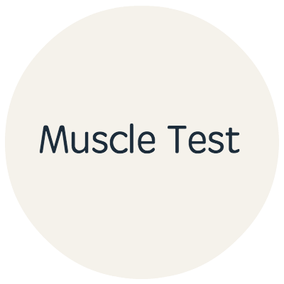 Muscle Test.png