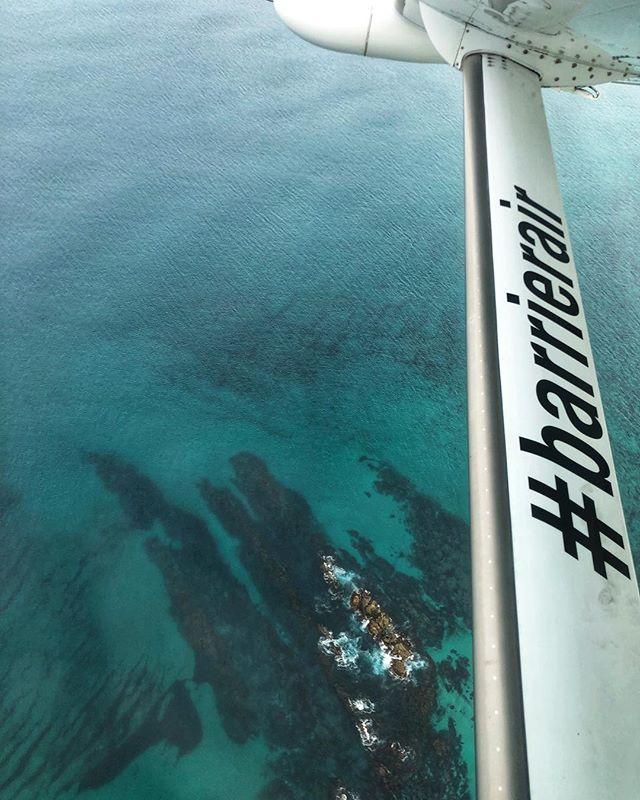 A #lokelladventure #greatbarrierisland #newzealand #lokelladventures #barrierair