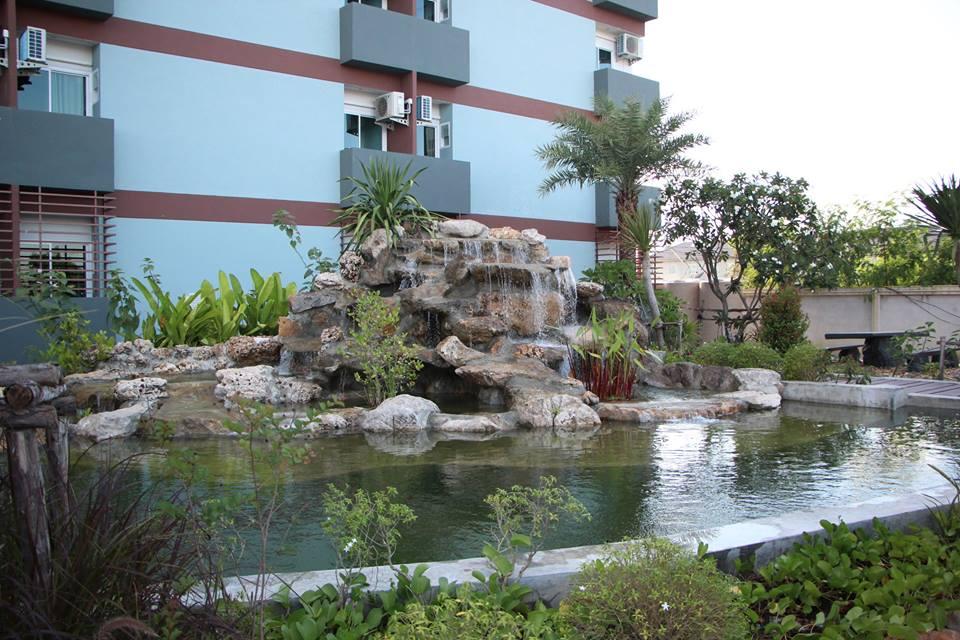 pond in garden.jpg