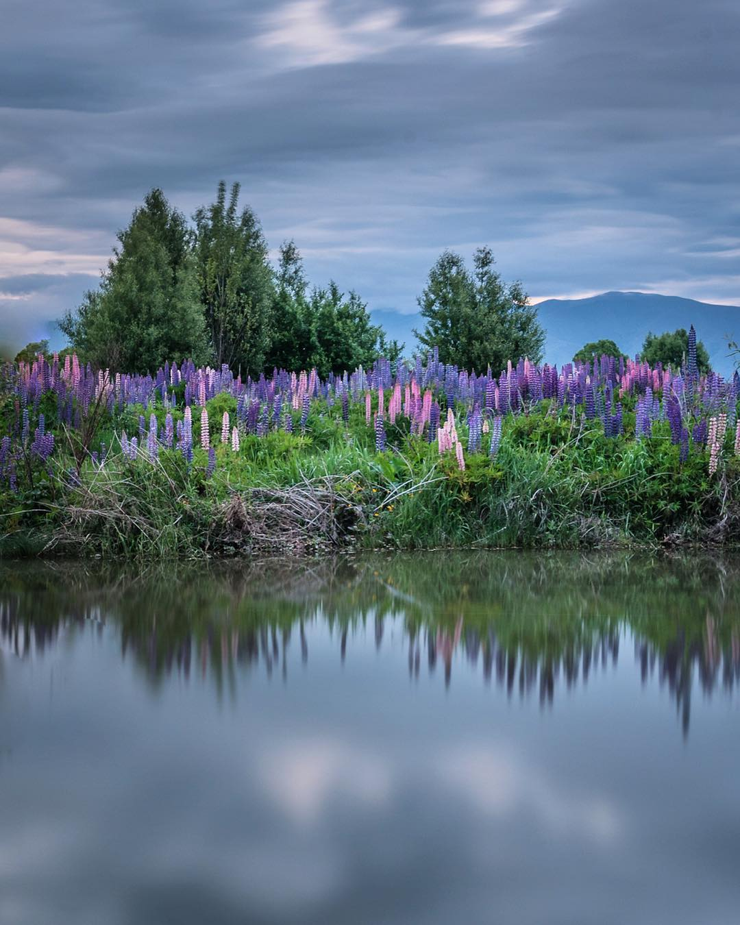 Interview With Deb Clark Tourism and Landscape Photographer