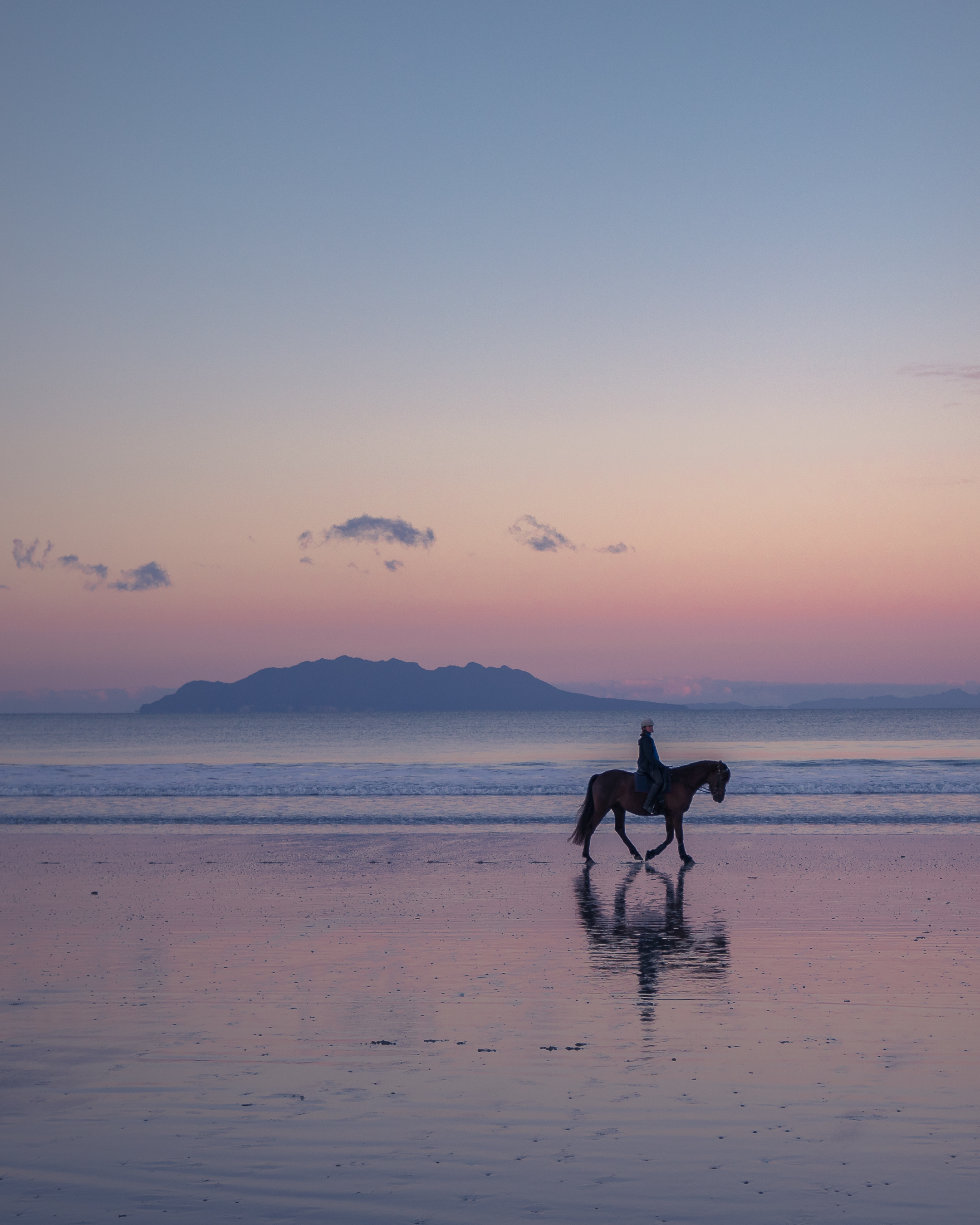 Horse rider.jpg