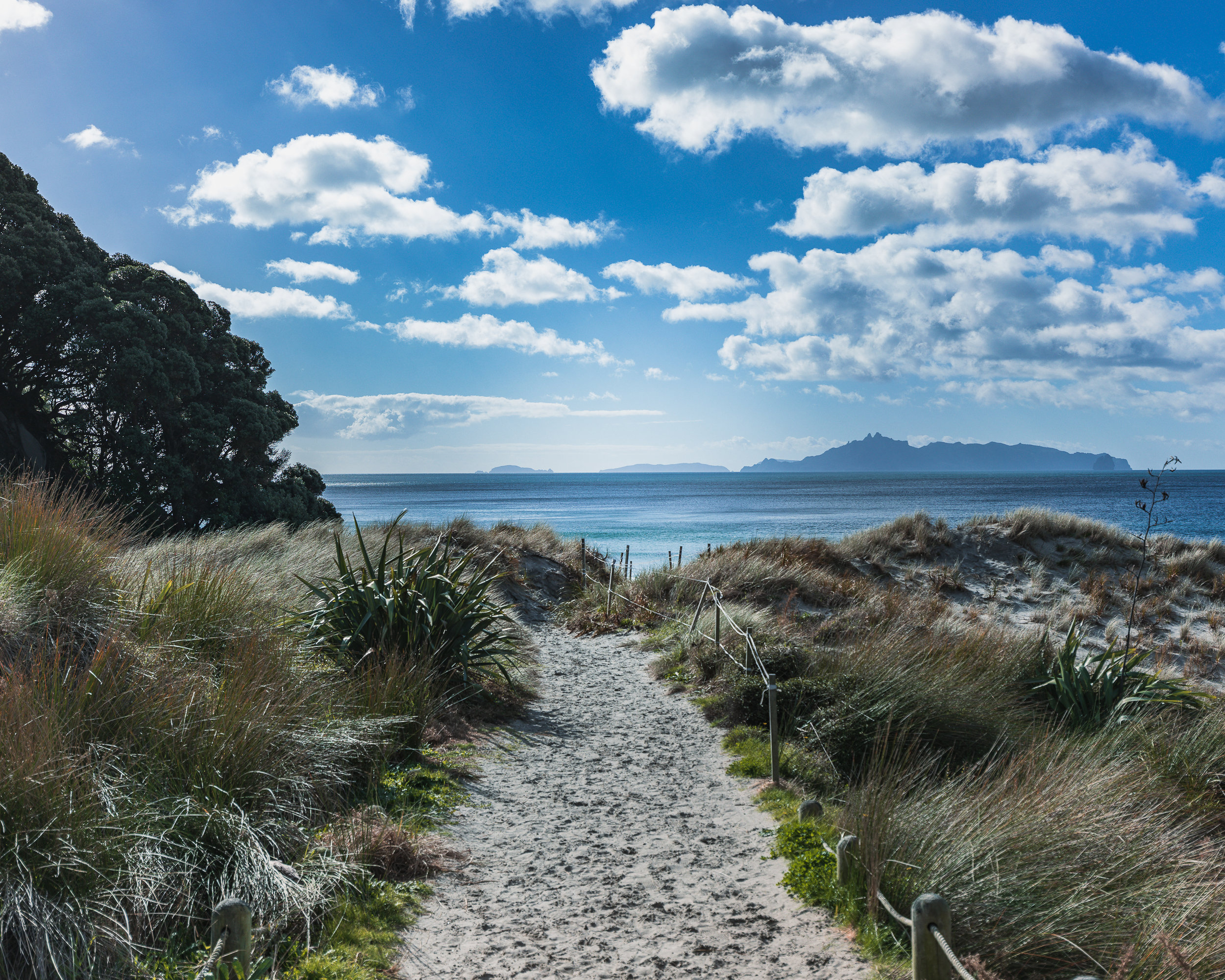 BEACHES TO CHECK OUT IN THE NORTH ISLAND OF NEW ZEALAND