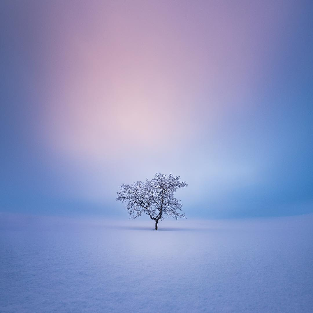 Mikko Lagerstedt Online Photography Courses