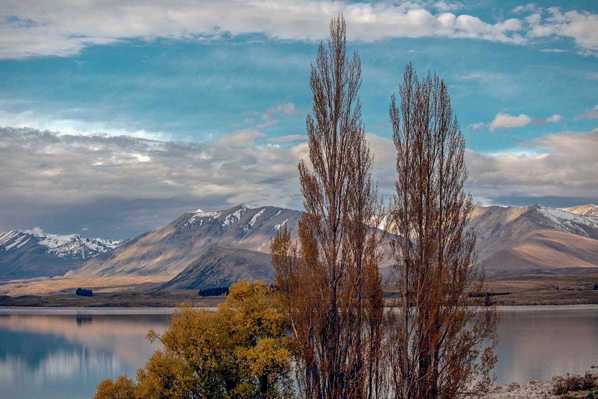 Road Tripping The South Island Of New Zealand