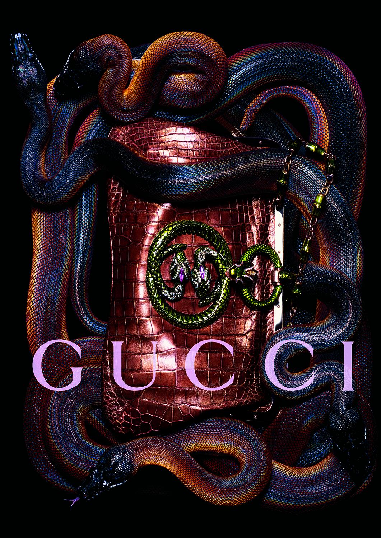 GUCCI ADS PB 3.jpg
