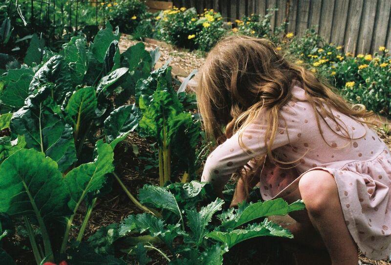 At home in the garden.  Photo: Nadia Mizner