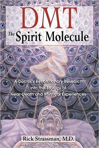 spirit-molecule-strassman.jpg