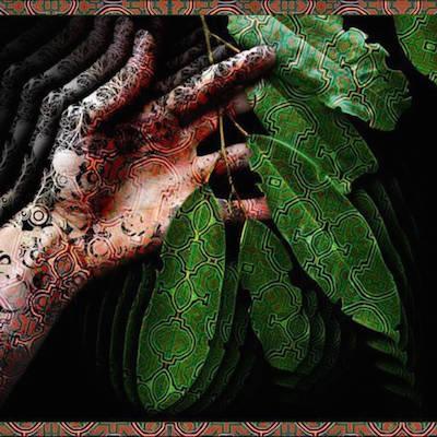 Plant Hand.jpg