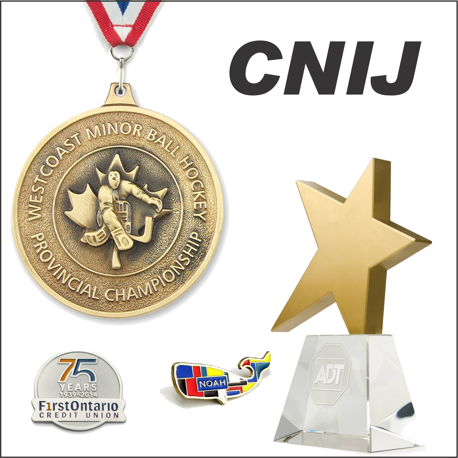 CNIJ Button.png