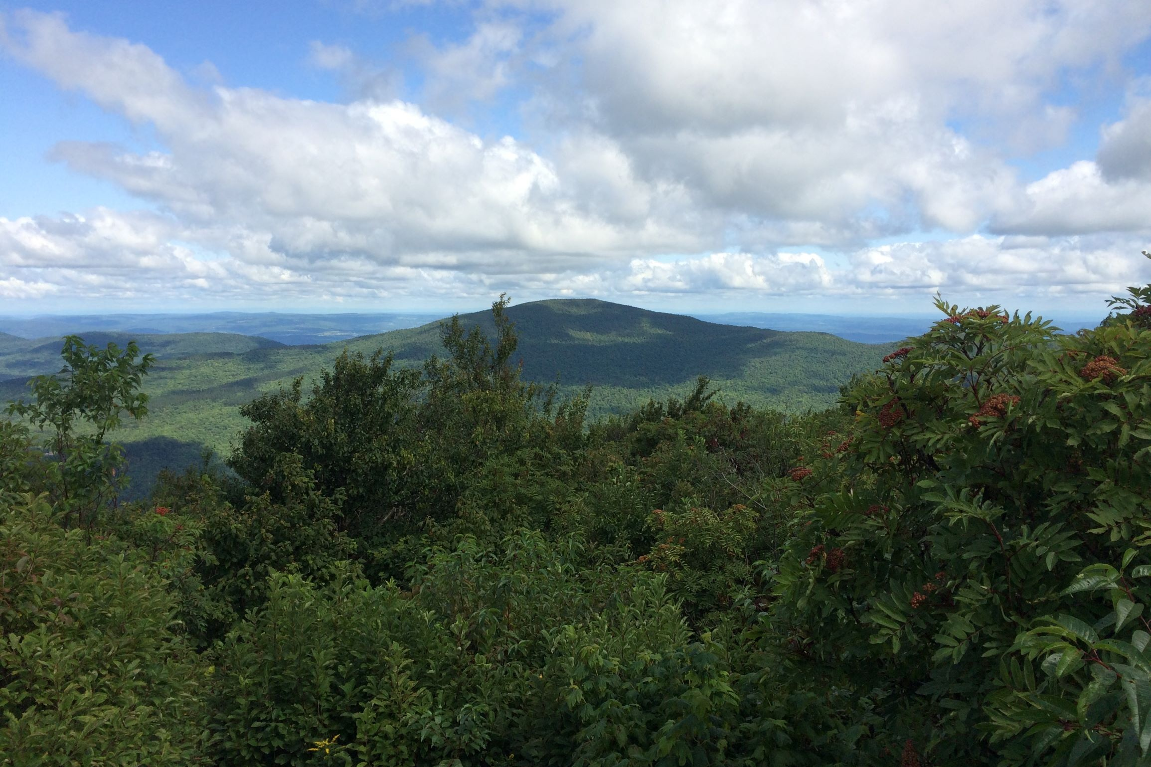 Exploring the region: Windham Mtn from the Blackhead Range. (Photo by Martha Waldman)