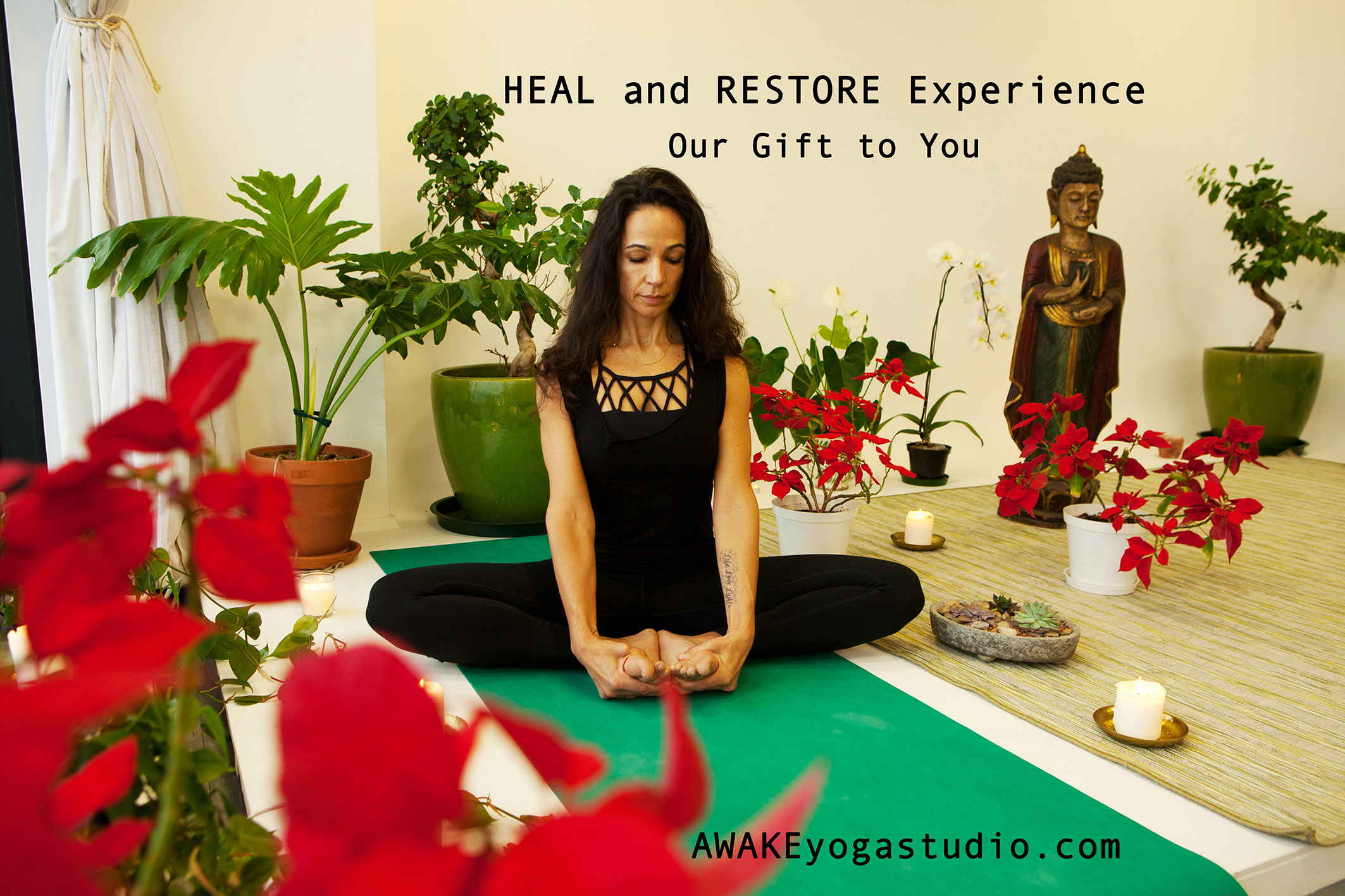 Heal and Restore Experience.jpg