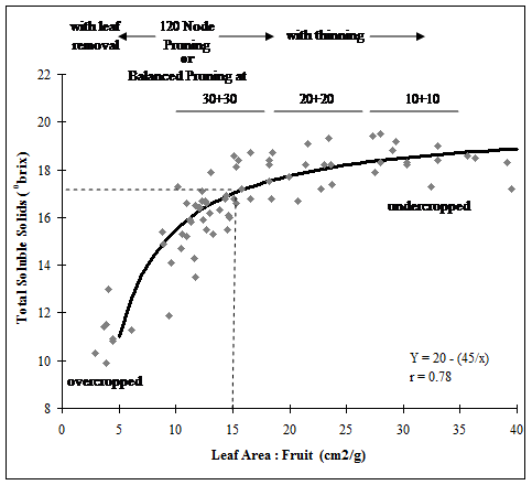 Figure 1. The effect of crop load (exposed leaf area to fruit ratio) on juice soluble solids in Concord.