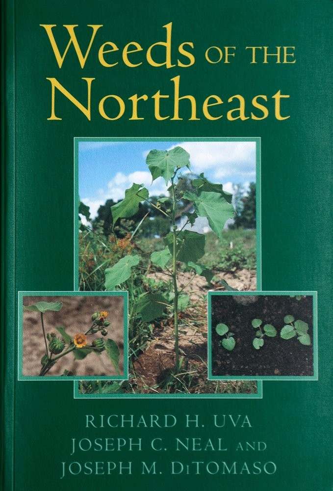 "- Common weeds found in grape vineyards are numerous and diverse. For this reason we recommend ""Weeds of the Northeast"" by Richard H. Uva, Joseph C. Neal and Joseph M. DiTomaso."