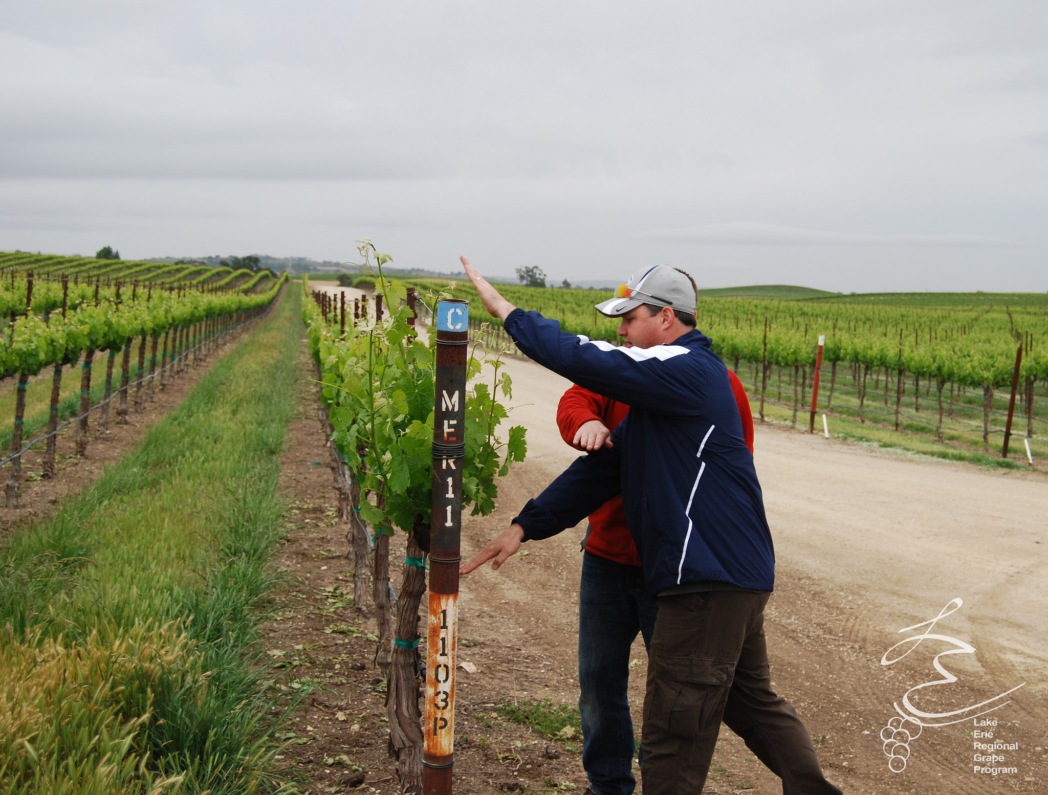 What is the efficient vineyard project? - Visit the Efficient Vineyard website by clicking here.