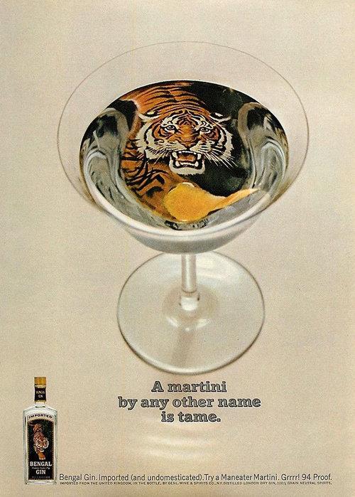 Bengal+gin+A+Martini.jpg