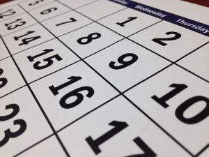 calendar-41a078a9b493099e7d641f9f09794498.jpg