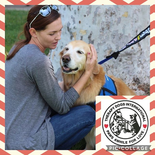 Therapy dog certification offered on Saturday, March 23rd. Must preregister. For more information or to register call 909-599-8844. #kellysk9college #dogtraining #tdi #therapydog