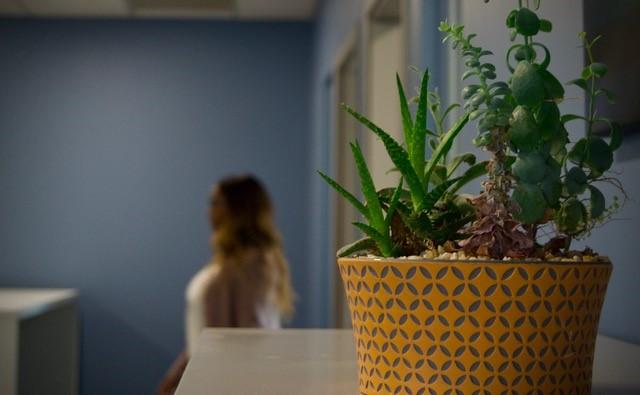 Plant with Jessica.jpg