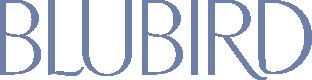 logoBlubird.png