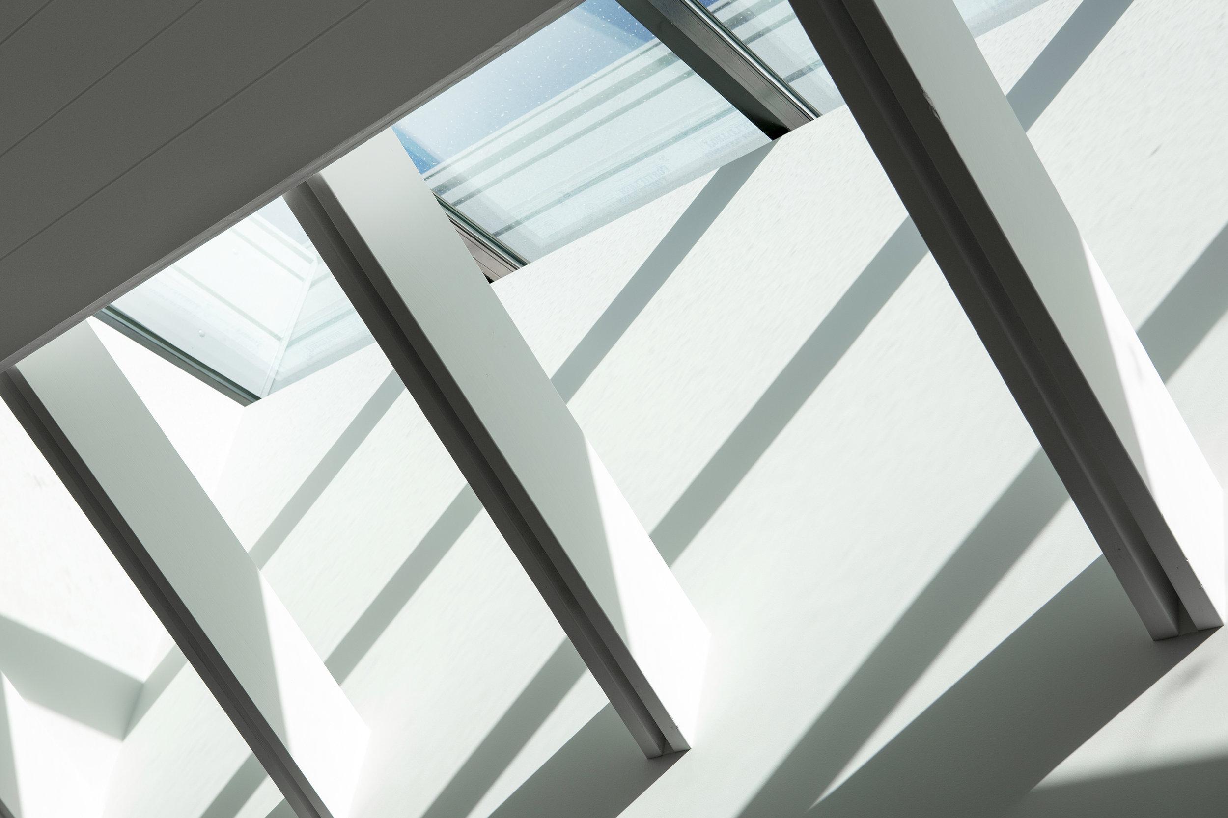 skylight 2.jpg
